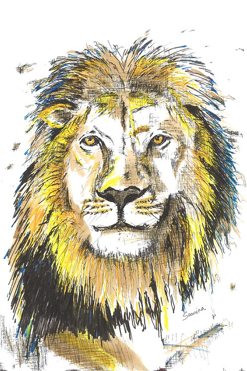 Cool King ( Print )40cmX60cm