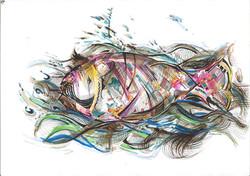 Plasticated Fish