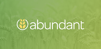Abundant Giving.png