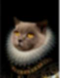 Capture d'écran 2020-05-27 à 14.38.18.