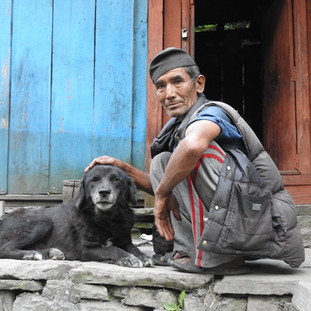 Dogs are a part of Himalayan communities