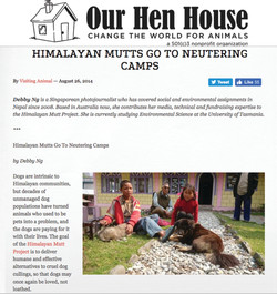 Our Hen House, 26 Aug 2014