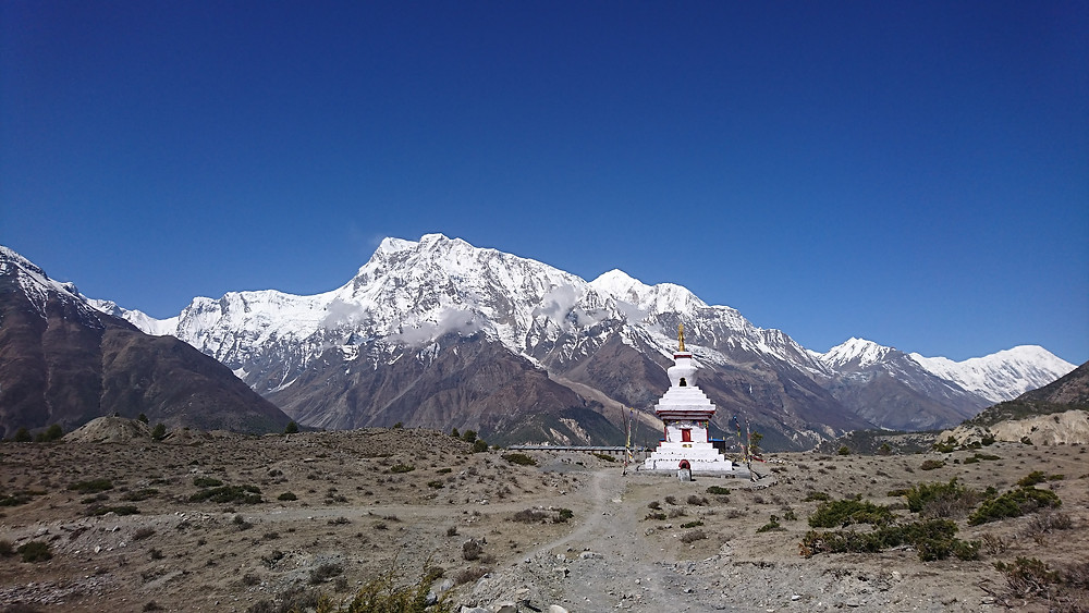 Spectacular views of the Annapurnas from Ngarwal.