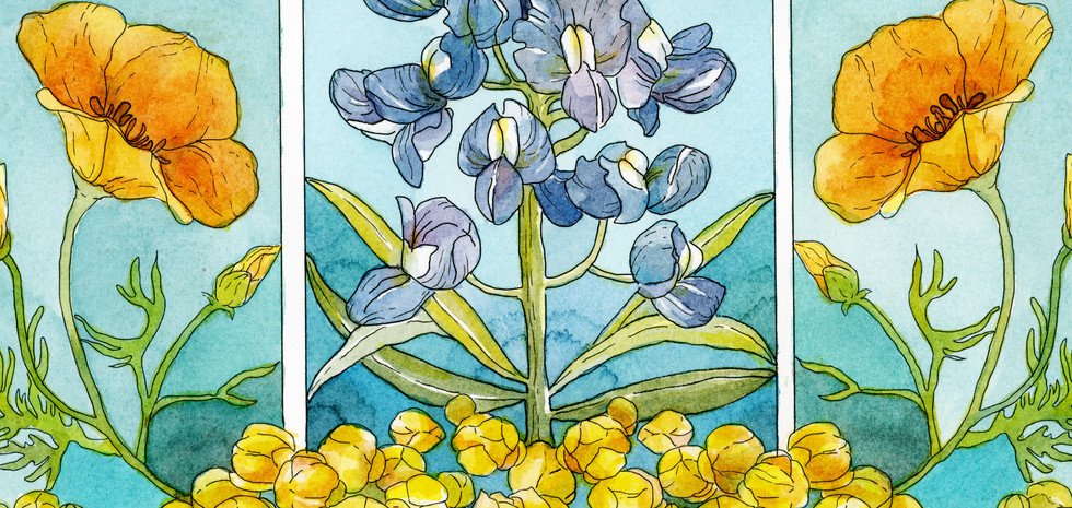 the painted ketubah - blue bells and pop