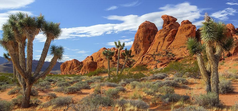Nevada_Gold_Butte_NM_Hero_WP.jpg