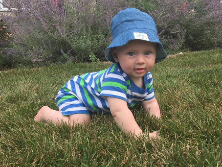 Growing Healthy Children vs. Healthy Grass