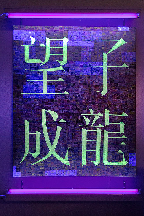 untitled, 望子成龍