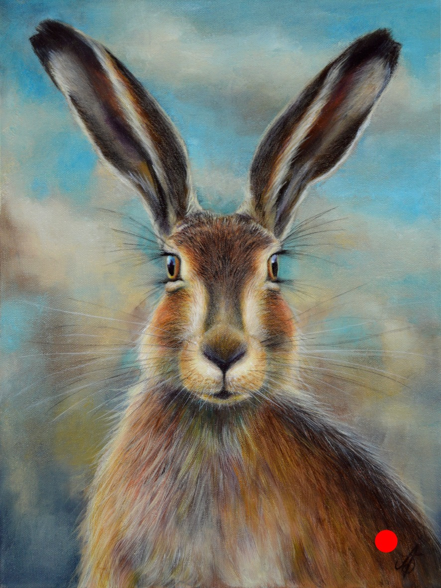 Hare Today, Gone Tomorrow!