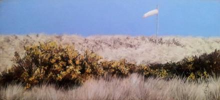 Windsock at Findhorn