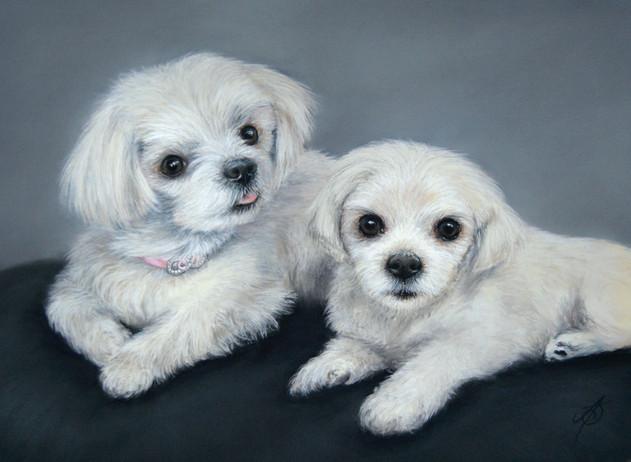 Coco and Lulu