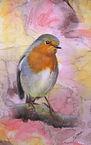 Robin on branch web.jpg