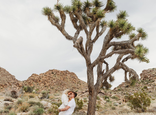 Preston + Whitney | Joshua Tree, California | Surprise Proposal and Engagement