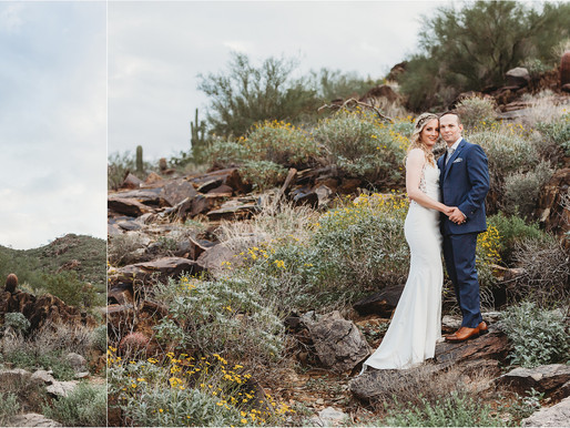 Ryan & Bobbie Lynn \ Paradise Valley, AZ \ Backyard EstateWedding