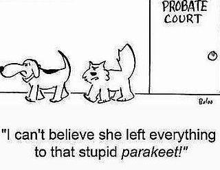 probate-cartoon.jpg