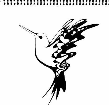 Hummingbird Sketch copy.jpg