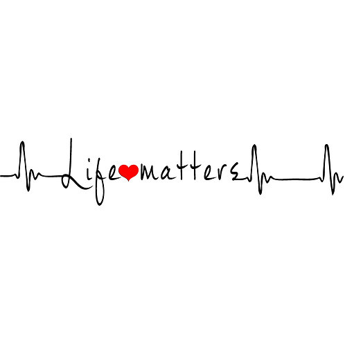 Life Matters   Decal
