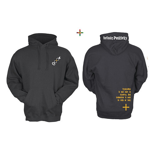 Ours to Win or Lose IP Hoodie