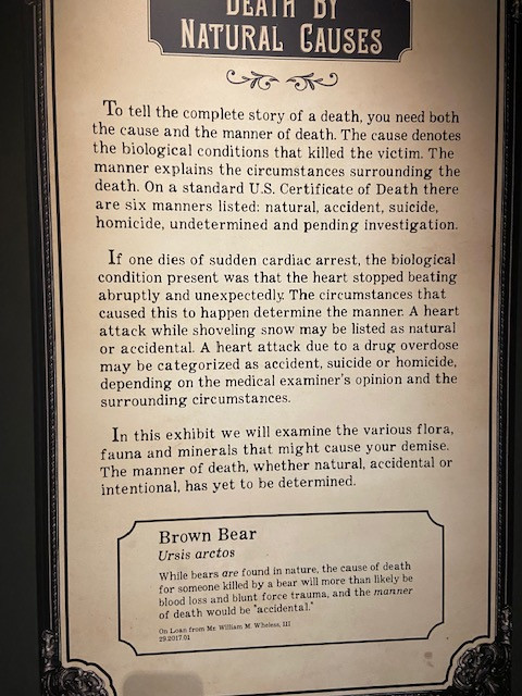 The Death Cause and Manner