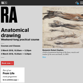 RA Anatomical drawing course that I will be Life Modelling in, in 2018, curated by Mary Ealden, the RA's Academic Programmes Manager.