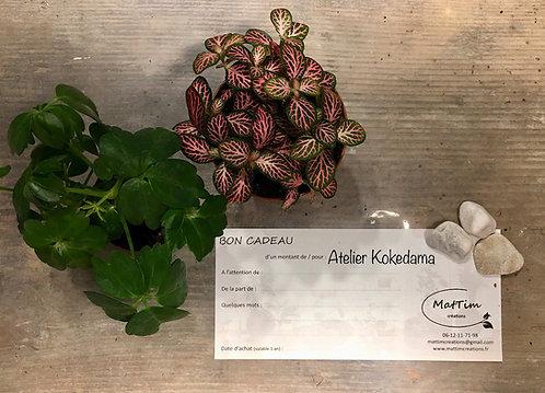 Bon Cadeaux - Atelier Kokedama