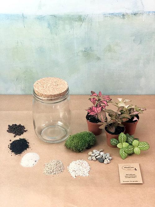 Kit DIY Terrarium Bocal