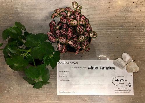 Bon Cadeaux - Atelier Terrarium