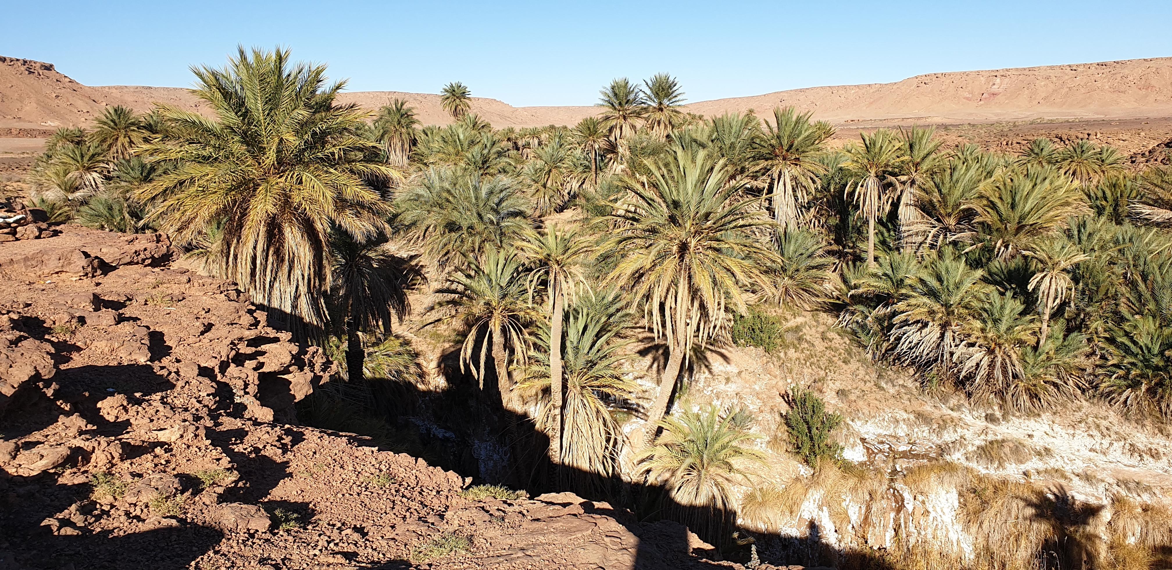 Merzouga Morocco