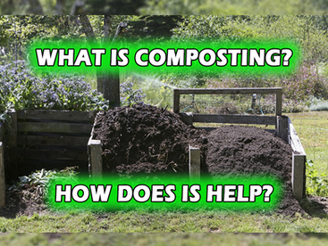 What is Composting? How Does it Help?