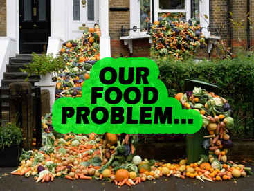 The Effects of Our Food Waste
