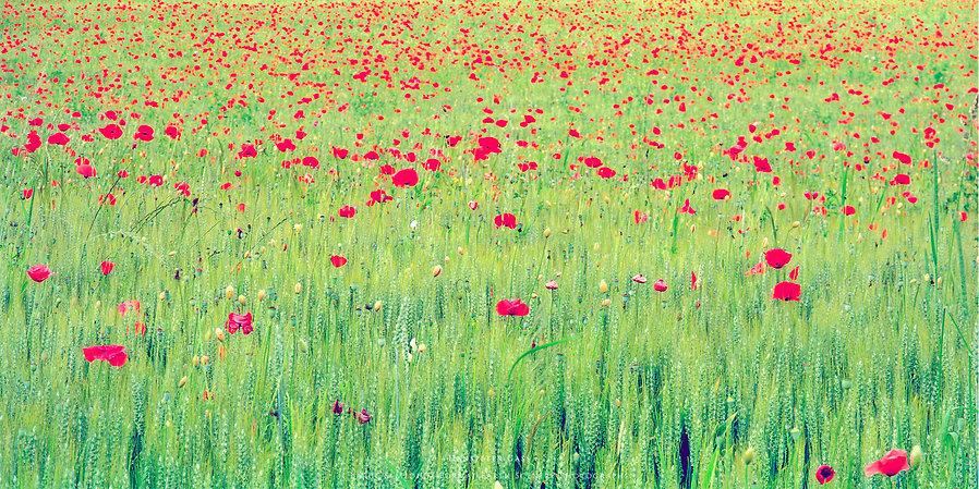 Hanspeter Gass Photography The Fabulous View Landschaftsfotografie Fotograf Fine Art