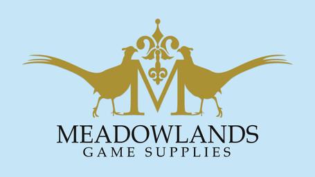Meadowlands logo 16x9.jpg