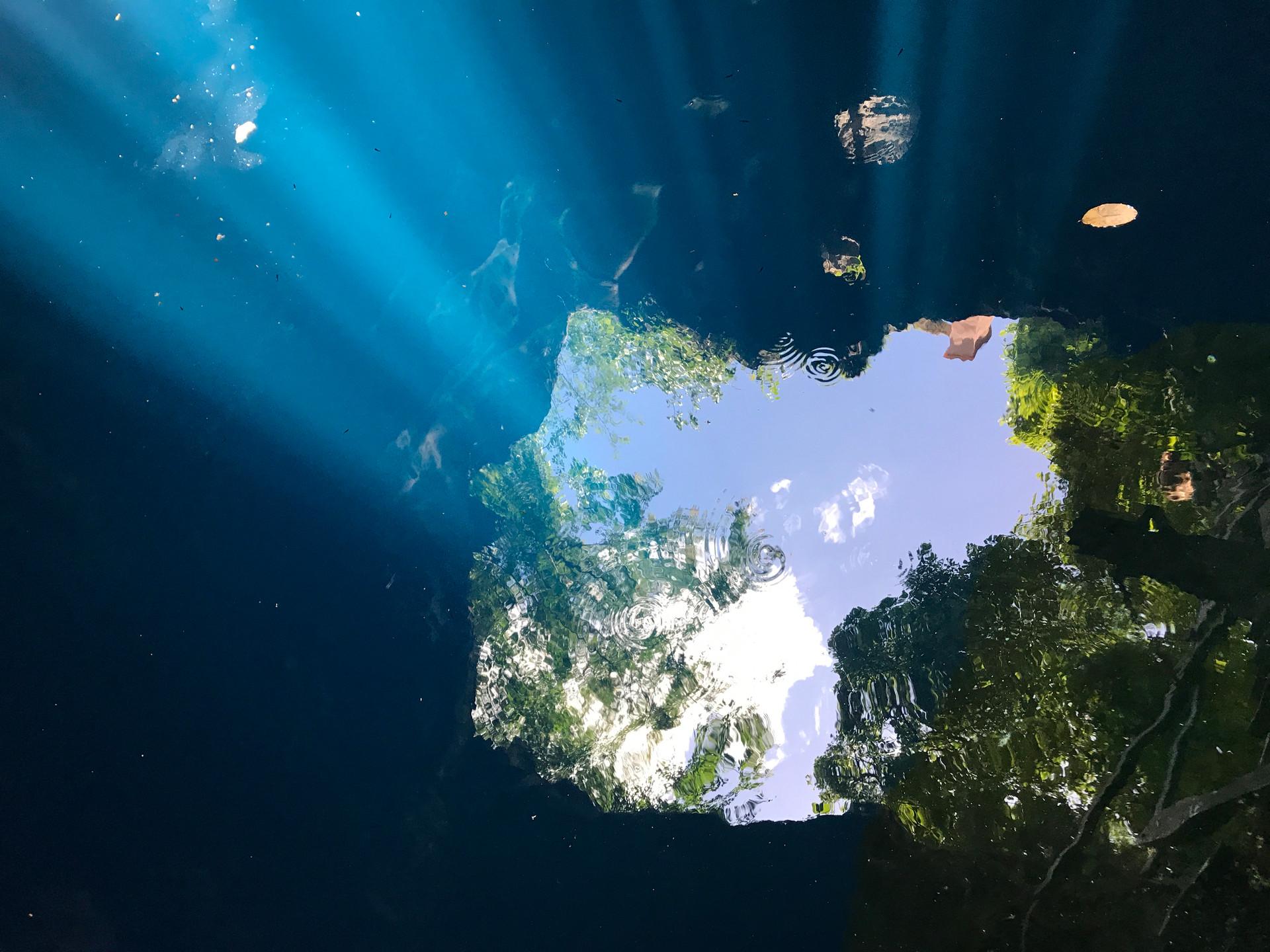 cenote_still6.jpg