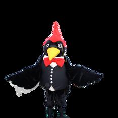 Professor Woodpecker