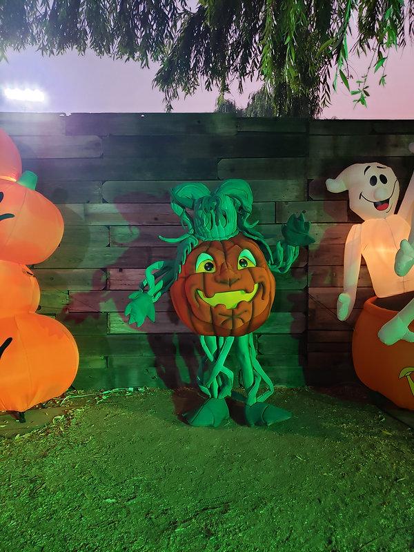 Pumpkin Man Dell'Osso 2  (1).jpg