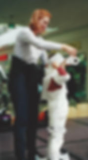 Mummy Wrap Contest
