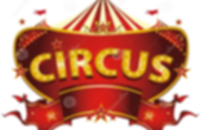 Circus Shows and Workshops