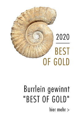 best of gold 2020.jpg