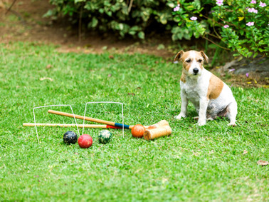 A little game of croquet is always an option