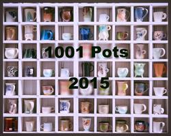 1001pots