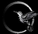 Colibri Midwifery