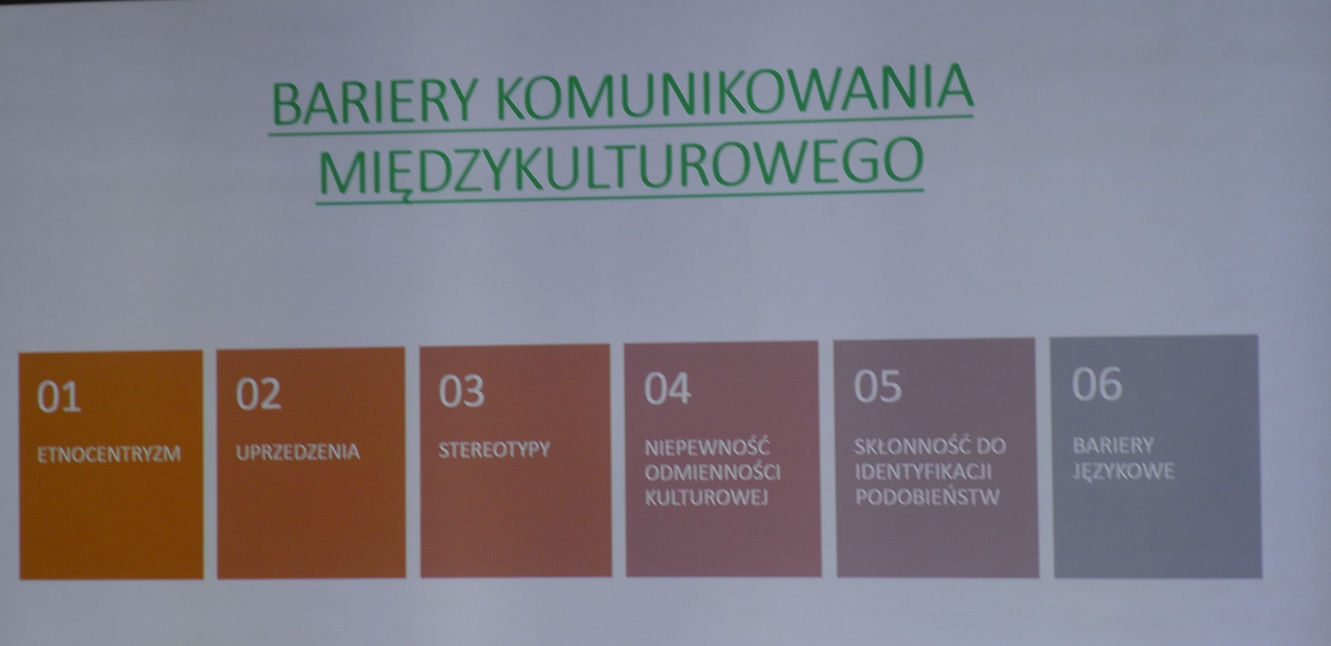 warsztaty z komunikacji międzykulturowej.