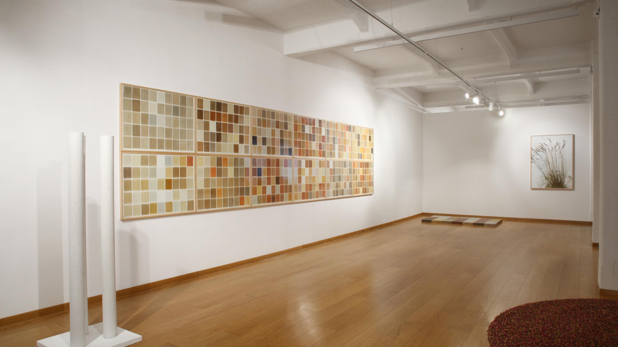 "Installation views ""herman de vries: all all all"", Cortesi Gallery Milan. Photo by Bruno Bani. Courtesy Cortesi Gallery London, Milan, Lugano"