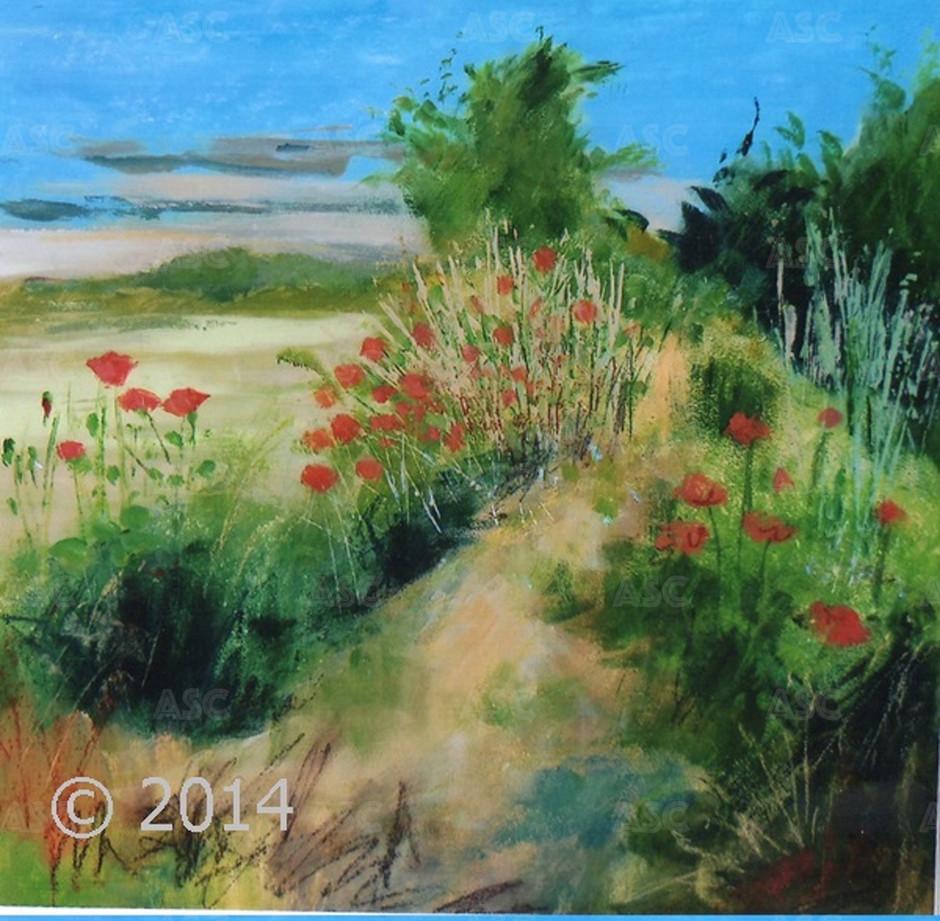 Poppies at Croy