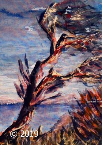 Tree Breeze, Greenan