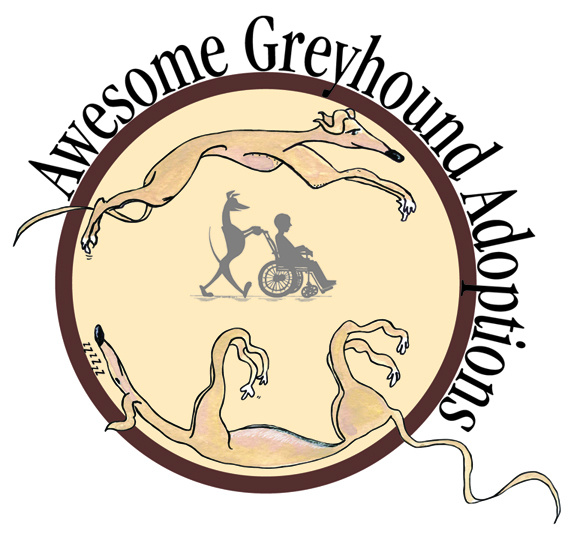 Awesome Greyhound Adoptions