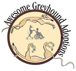 Awesome Greyhound Adoptions