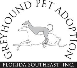 Greyhound Pet Adoption