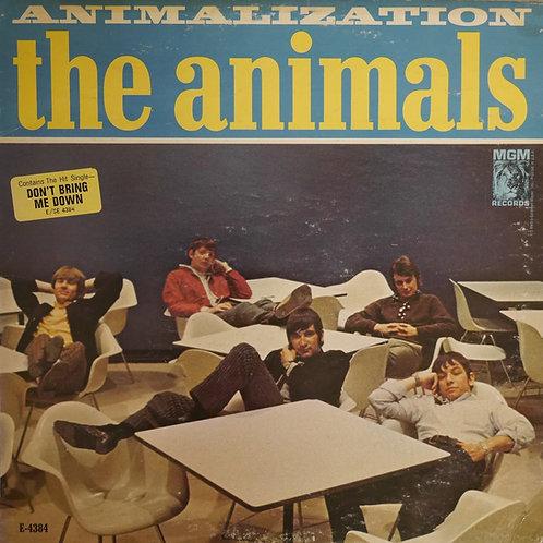 Animals / Animalization