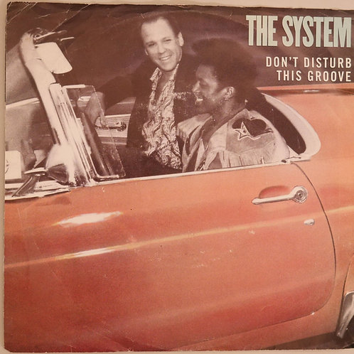 THE SYSTEM / DON'T DISTURB THIS GROOVE