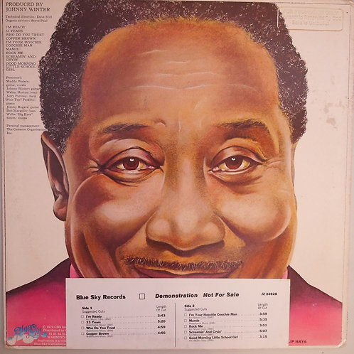 MUDDY WATERS / I'm Ready(US 白プロモ・STERLING刻印)